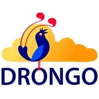 Negende DRONGO talenfestival geheel online
