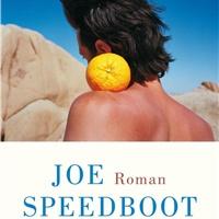 Filmrechten 'Joe Speedboot' van Tommy Wieringa verkocht