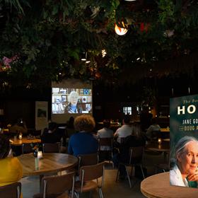 De nieuwe Jane Goodall werd dinsdag gepresenteerd in Ouwehands Dierenpark